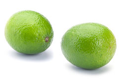 Lime citrus Stock Image