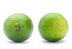 Lime citrus Royalty Free Stock Image