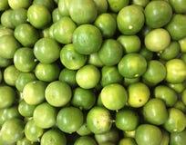 Lime citrus fruit Stock Photography