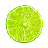 Lime citrus slice Stock Image