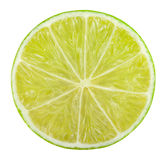 Lime citrus Royalty Free Stock Photography