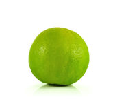Lime close up isolated on white background Royalty Free Stock Image
