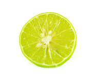 Lime close up isolated on white background Royalty Free Stock Photos