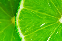 Lime5 Stock Photos