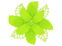 Lime colored material 3D illustration flower rendering vector illustration