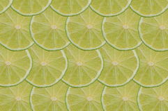 Lime composition Royalty Free Stock Photos