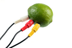 Lime connect. Lime with the connected television wires removed on a white background without isolation stock image