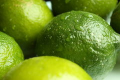 Lime with drops of water. Green lime fruits covered with drops of water Stock Photo