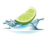 Lime falling in water splash isolated Royalty Free Stock Photo
