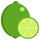 Lime fresh juicy citrus fruit icon, vector illustration. Flat style design isolated on white. Colorful graphics Royalty Free Stock Photo