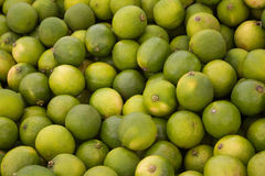 Lime fruit background , pile of green lime fruits Stock Photography