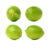 Lime fruit covered with the multiple water drops, isolated over the white background, set of different foreshortenings Stock Images