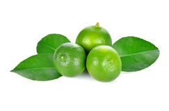 Lime. fruit with a half Royalty Free Stock Photography