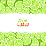 Lime fruit Horizontal seamless border. Vector illustration card top and bottom Fresh tropicat green lemon whole and Royalty Free Stock Photos
