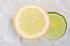 Lime fruit on ice Stock Image