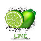 Lime fruit  illustration with grunge and halftone effect Royalty Free Stock Images