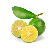 Lime fruit with leaf Stock Images