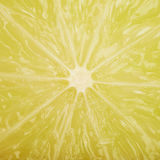 Lime fruit meat texture Royalty Free Stock Images