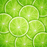 Lime fruit slices background vector illustration