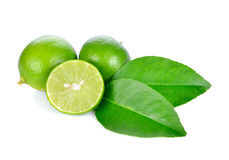 Lime fruit. On white background Royalty Free Stock Images