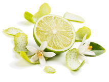 Lime fruit and zest Royalty Free Stock Images