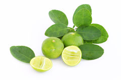 Lime. Fruits with leaves isolated on white Royalty Free Stock Images
