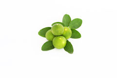 Lime. Fruits with leaves isolated on white Royalty Free Stock Photography