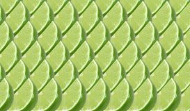 Lime fruits slice abstract seamless pattern Stock Image