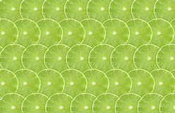 Lime fruits slice abstract seamless pattern background Stock Image
