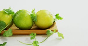 Lime fruits in a tray with coriander leaf 4k. Lime fruits in a tray with coriander leaf on white background 4k stock video