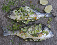 Lime and ginger sea bream Royalty Free Stock Image