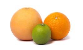 Lime, grapefruit and orange Royalty Free Stock Photo