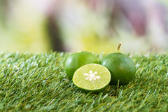 Lime on grass Royalty Free Stock Photography