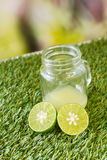 Lime on grass Stock Photography