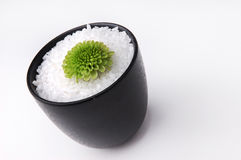 Lime Green (2). Bowl of sea salt with a lime green chrysanthemum stock image