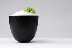 Lime Green. Bowl of sea salt with a lime green chrysanthemum Stock Photography