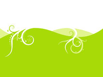 Lime green background. Royalty Free Stock Image
