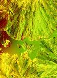 Lime green crystals macro Royalty Free Stock Image