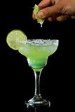 Lime green margarita Stock Images