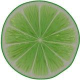 Lime green slice. Illustration lime slice on white background Stock Photos