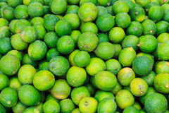 Lime green Royalty Free Stock Images