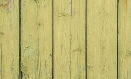 Lime green wood wall at shabby style Royalty Free Stock Photography