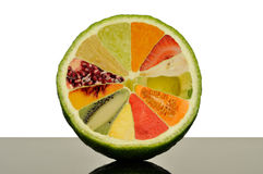 Lime half with 11 different fruits inside Royalty Free Stock Photos