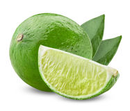 Lime with half Stock Photos