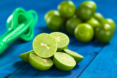 Lime Halves Stock Images