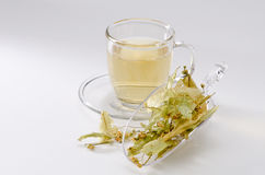Lime Herbal Tea Stock Image