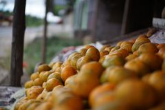 Lime orange at stall, Medan Indonesia. A lime is a hybrid citrus fruit, which is typically round, lime green, 3–6 centimetres (1.2–2.4 in) in Royalty Free Stock Photography