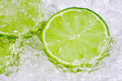 Lime on ice Royalty Free Stock Photography