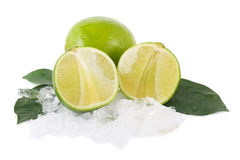 Lime and ice Stock Photography