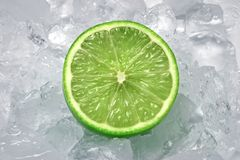 Lime on Ice royalty free stock image